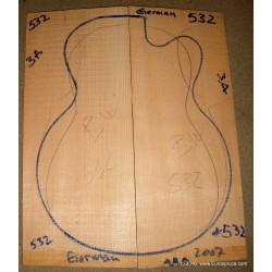 WRC, guitar top, acoustic size, 2013